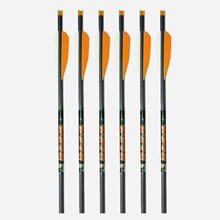 "Whitetail 20"" Crossbolt 6PK 1921590154"