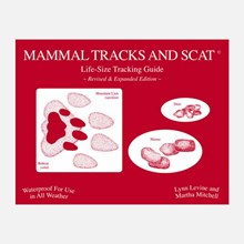 Mammal Tracks And Scat 1313551114