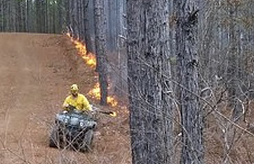 Controlled burns are top tool for wildlife and land managers