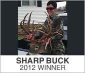 Sharp Buck