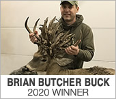 Butcher Buck