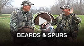 Beards & Spurs